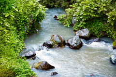 Stream over mossy rocks. Beautiful nature Royalty Free Stock Photo