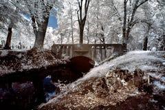 Stream in park in Poznan Stock Image
