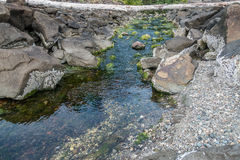 Stream At Park. A view of a stream as it flows onto the shoreline of Saltwater State Park Stock Photos