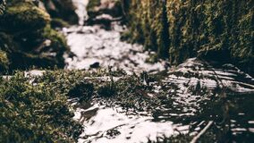 Stream passing mossy rocks Stock Photography