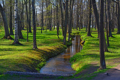 A stream in Peterhof, St. Petersburg, Russia. A stream in Lower garden in Peterhof, St. Petersburg, Russia Royalty Free Stock Photography