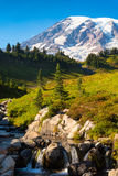Stream plunging down Mt Rainier Royalty Free Stock Images