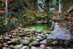 Stream Pool in Mountains Wilderness Royalty Free Stock Photography
