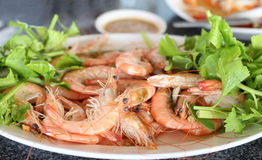 Stream prawn seafood with spicy sauce Stock Image
