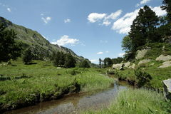 Stream in Pyrenees Stock Photography
