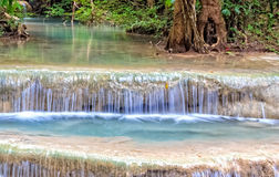 Stream in Rain Forest Stock Photography