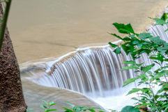 Stream in Rainforest, Thailand Stock Images
