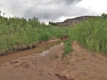 Stream Beside the Rio Chama near Abiquiu, New Mexico. Early evening as the Rio Chama flows among the colorful cliffs near Abiquiu, New Mexico royalty free stock photos