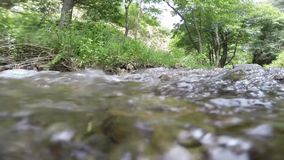 Stream by the river stock footage