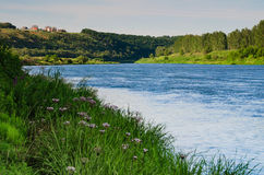 Stream river flows on green dale Stock Photography