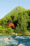 Stream river in the Norway. Royalty Free Stock Photography