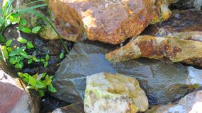 Stream. With rock and green Stock Photography
