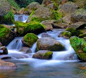 Stream and rocks. The stream tumbled over the rocks Royalty Free Stock Photography