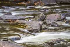 Stream and Rocks in Autumn - Ontario, Caanda Royalty Free Stock Image