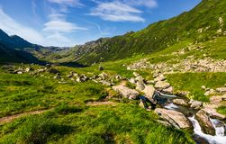 Stream among the rocks in grassy valley. Gorgeous summertime landscape of Fagaras mountains Royalty Free Stock Photography