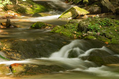 Stream, Rocks and Moss. A peaceful secluded stream located in the Appalachian Mountains of Virginia, USA with rocks and moss Royalty Free Stock Photos