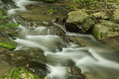 Stream, Rocks and Moss - 4. A peaceful secluded stream located in the Appalachian Mountains of Virginia, USA with rocks and moss Royalty Free Stock Photos