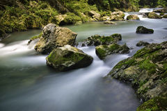 Stream and rocks Stock Photography