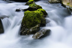 Stream and rocks. Water flowing over rocks in a small stream in the lover gorge. in Guizhou Province, China Royalty Free Stock Photo