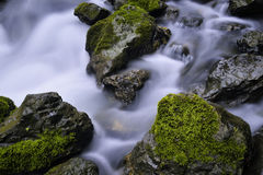 Stream and rocks. Water flowing over rocks in a small stream in the lover gorge. in Guizhou Province, China Royalty Free Stock Image