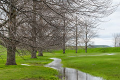 Stream running by deciduous trees through pasture Royalty Free Stock Photo