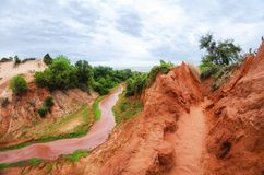 Stream running down a red canyon with green clover on the shore in Vietnam near Mui Ne stock images