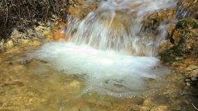 Stream running through forest stock video footage