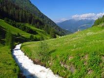 Stream running through green valley Alps spring summer Stock Image