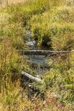 A stream running from Old Faithful. Near the Continental Divide Trail. Famous geyser attraction in Yellowstone known for its hot-water eruptions on a consistent royalty free stock image