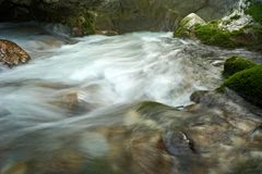 Stream Running Water Royalty Free Stock Image