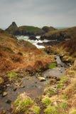 Stream runs down to the rugged coastline, Kynance Cove, Cornwall. royalty free stock photography