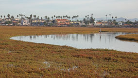Stream runs though Tijuana Slough NWR. With Imperial Beach in the background stock photo