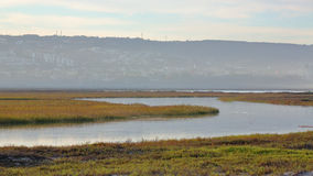 Stream runs though Tijuana Slough NWR. With mist in the background stock image