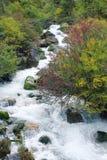Stream scenery Stock Images