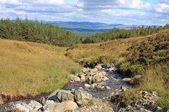 Stream in Scotland Royalty Free Stock Photography