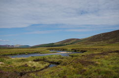 A stream in the Scottish Highlands. A meandering stream in the Highlands of Scotland with heather covered mountains in the background Stock Photo