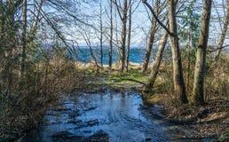 Stream At Seahurst Beach 2. A stream flow toward the Puget Sound at Seahurst Beach Park in Burien, Washington royalty free stock photos