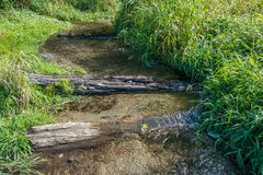 Stream At Seahurst Park. A stream flows into the Puget Sound at Seahurst Park in Burien, Washington stock images