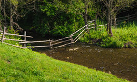 Stream shallow river around green trees and grass Royalty Free Stock Photography