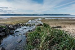 Stream And Shoreline. A stream flows across the shoreline and into the Puget Sound at Dash Pioint State Park in Washington State Royalty Free Stock Photos