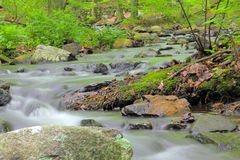 Stream Slow Shutter. A wild stream in the wilderness shot with a slow shutter Stock Photography