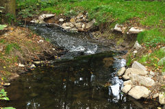 Stream. Small stream in picturesque nature Stock Image