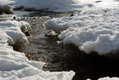 Stream through snow. Spring stream flowing through thawing snow in sunlight Royalty Free Stock Photography