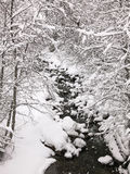 Stream in the snow Royalty Free Stock Image