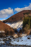 Stream between snowy mountains with deciduous and conifer forest Royalty Free Stock Image