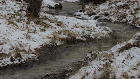 Stream in a snowy winter forest stock video footage