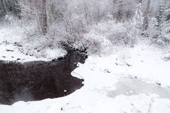Stream in snowy winter forest. Stock Photos
