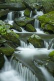 Stream, Spring Landscape, Great Smoky Mtns NP Stock Image