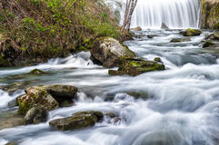 Stream at spring. A small stream in the Tuscan countryside in the spring Stock Photo