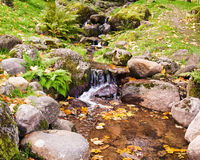 Stream among stones Royalty Free Stock Image